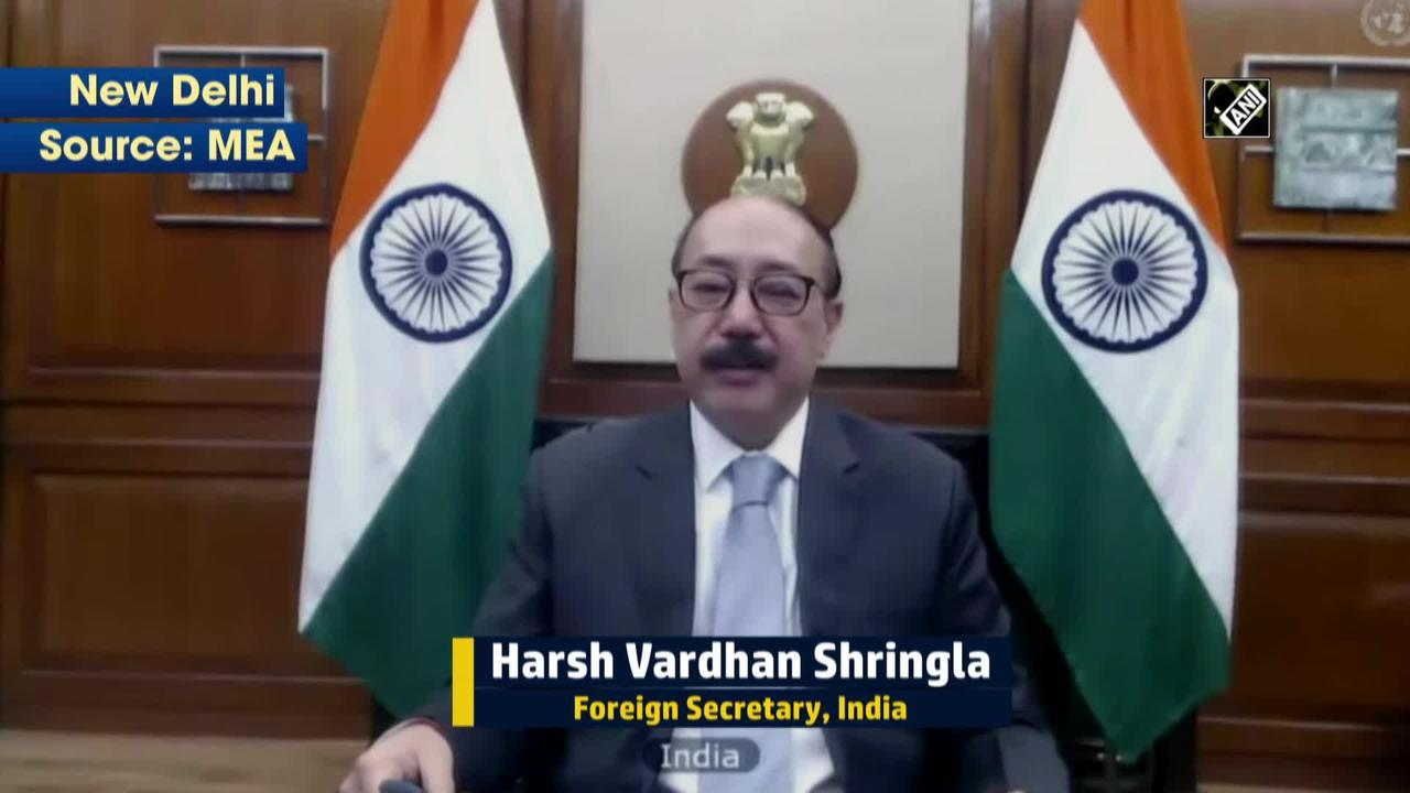 Waiving IP rights will ensure timely availability of COVID vaccines: India at UNSC