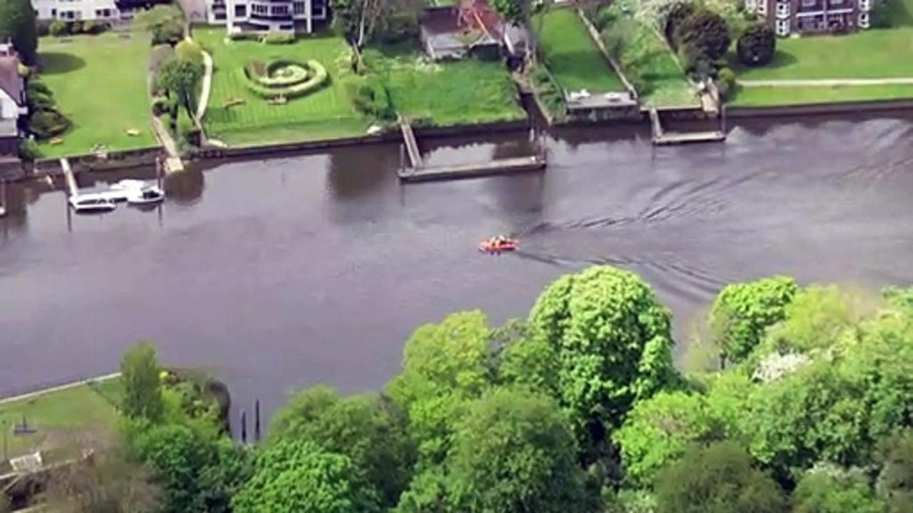 Baby whale spotted in Thames after being freed from lock