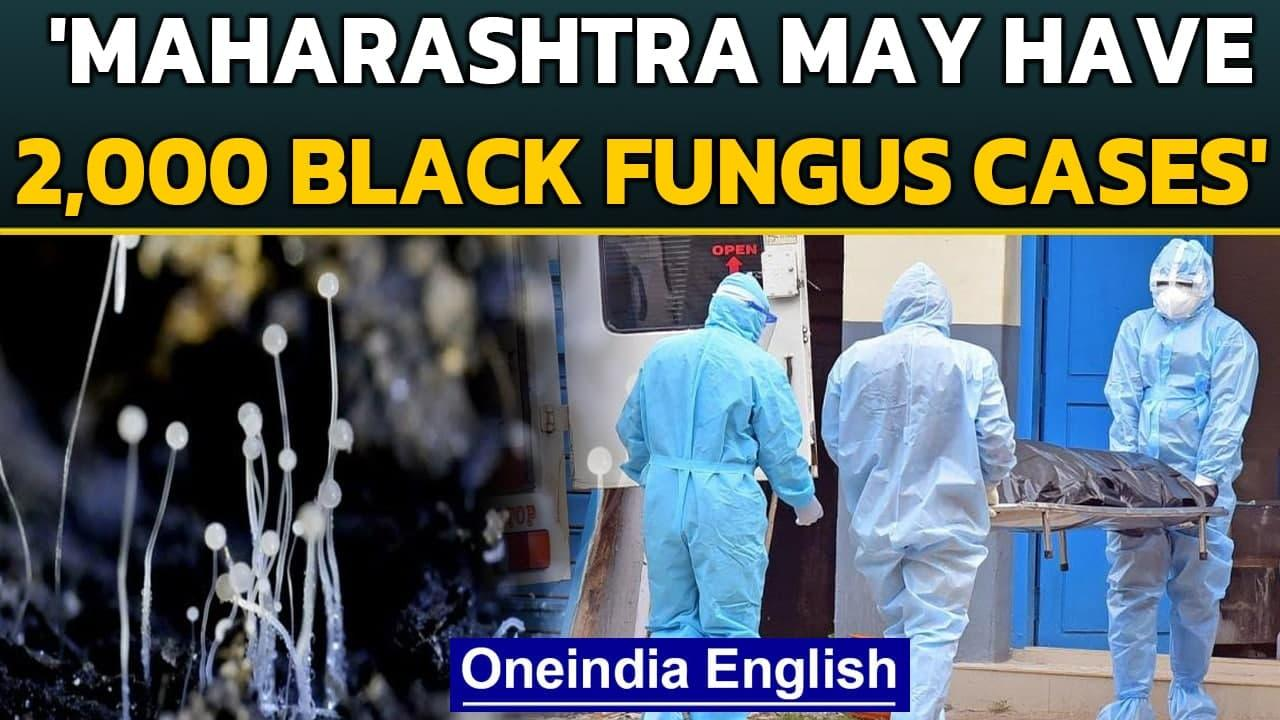 Black Fungus: Over 2000 cases in Maharashtra, Mucormycosis deaths on the rise | Oneindia News