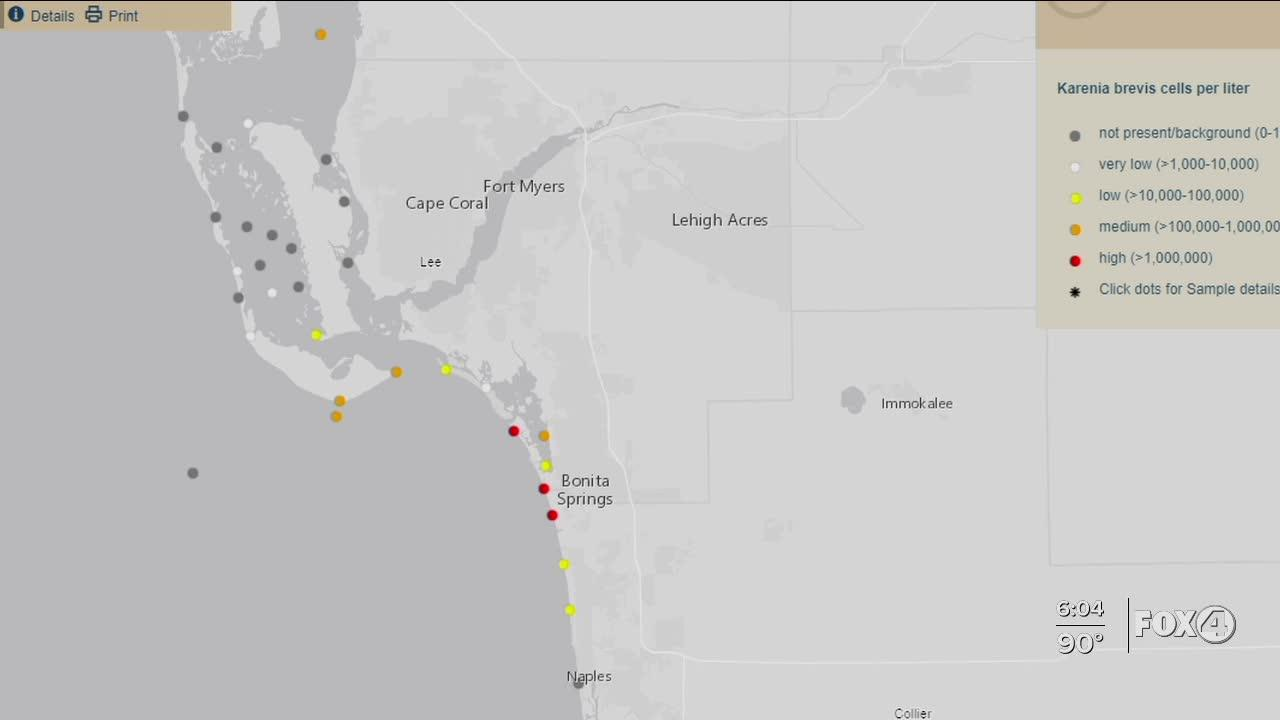HEALTH ALERT: Red Tide present in several Gulf locations