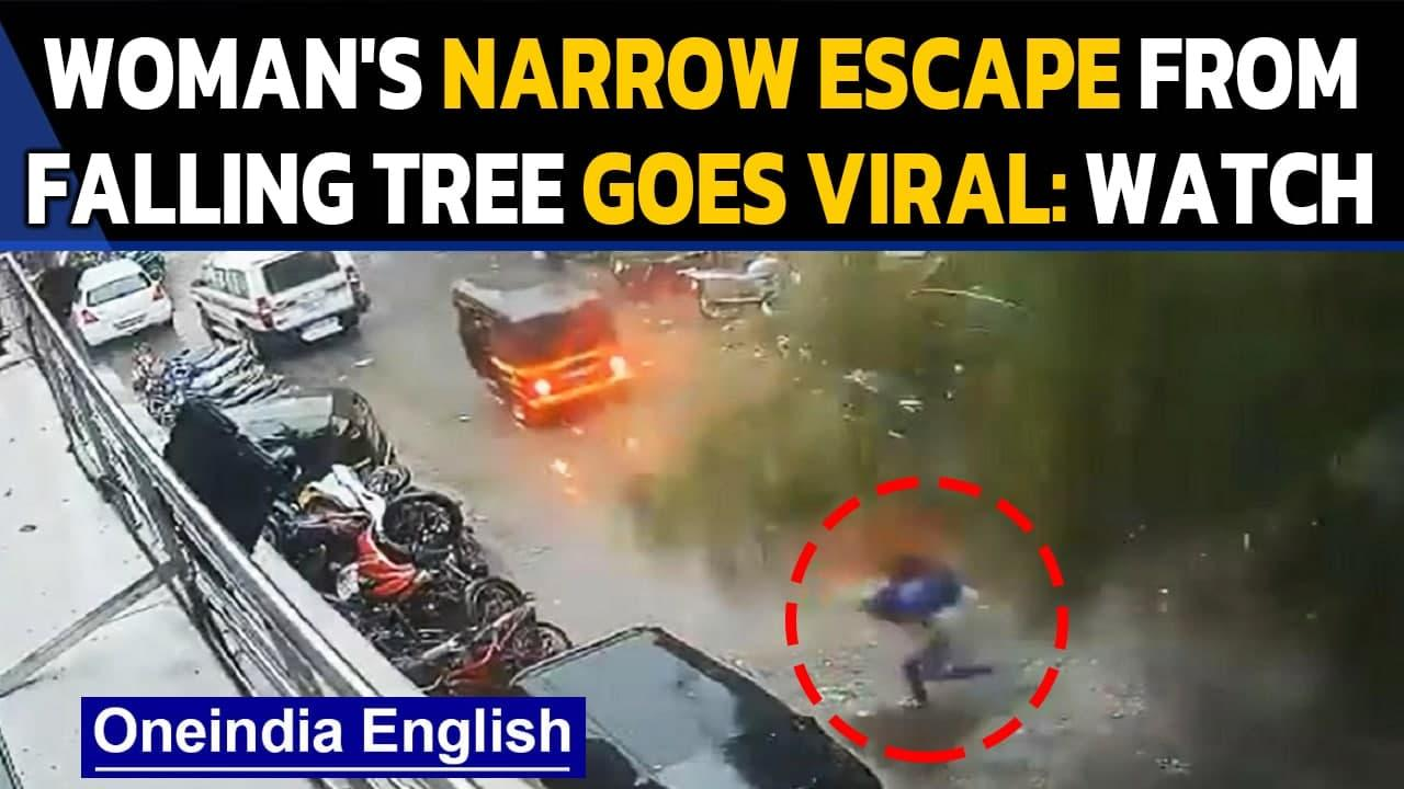 Mumbai: Woman's miraculous escape from a giant tree during cyclone Tauktae | Oneindia News