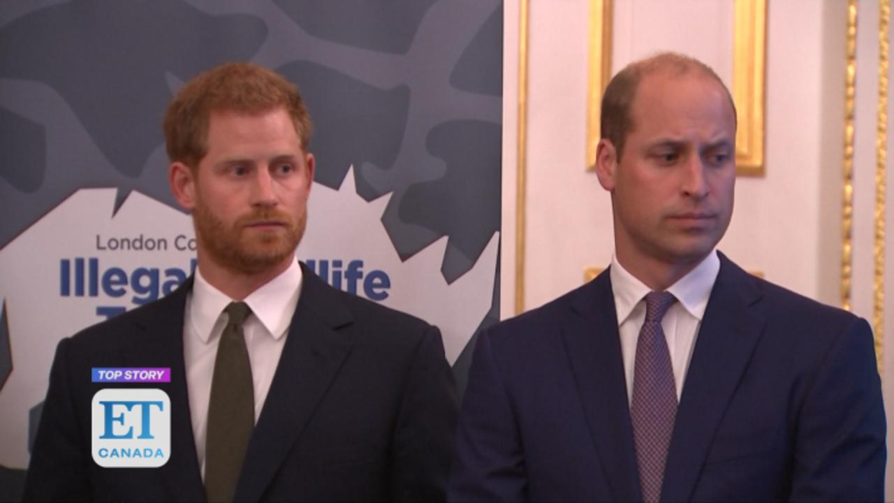 Prince William, Prince Harry Respond To Martin Bashir Found 'Guilty Of Deceit' Over 1995 Interview With Princess Diana