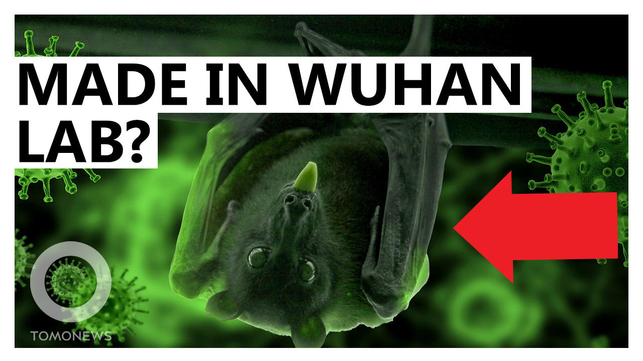 Republicans: COVID-19 Started in Wuhan Lab