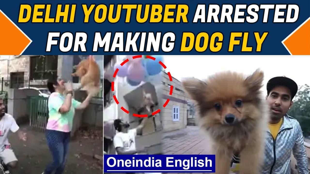 Delhi Youtuber Gaurav John arrested for flying dog using balloons| Animal Cruelty | Oneindia News