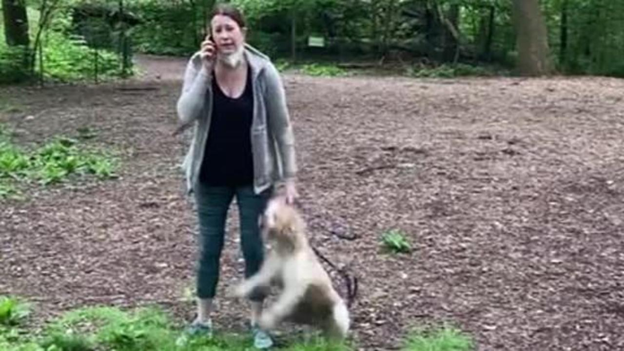Video shows Amy Cooper calling cops on Black man in Central Park