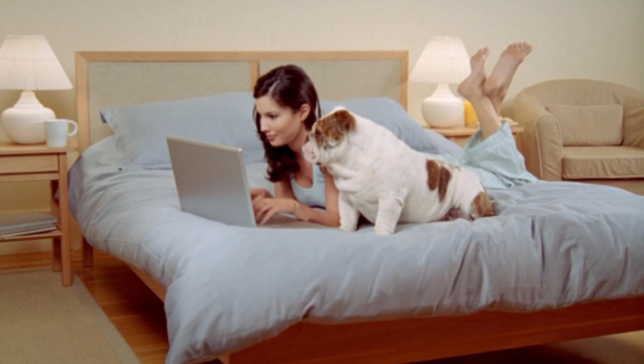 Train Your Pet (and Yourself) For Your Return to Work