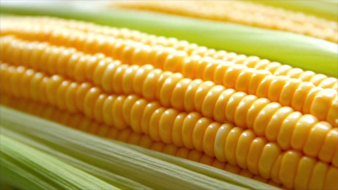 Make the Most of Fresh Summer Corn with These Tips for Buying, Storing, and Prepping It