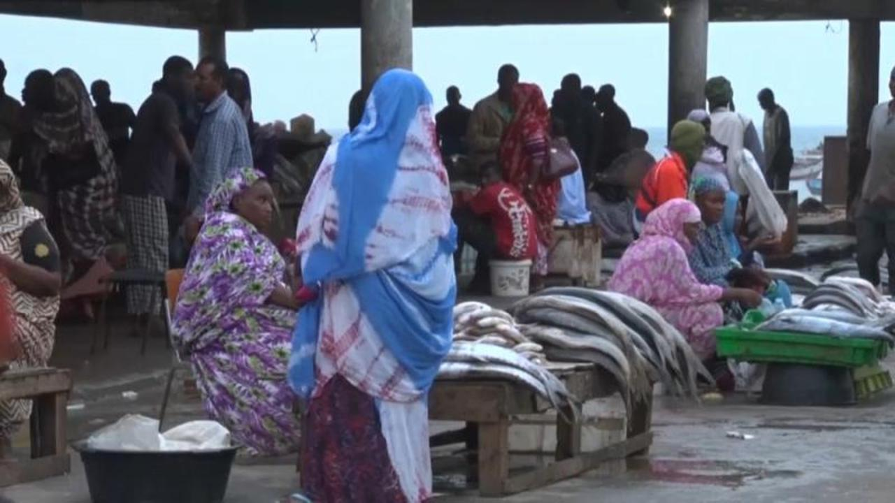 European companies criticised over West African food security