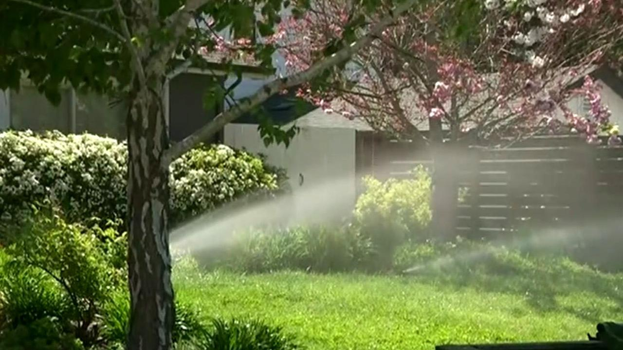 Marin County Residents Fall Short of Water Conservation Goal