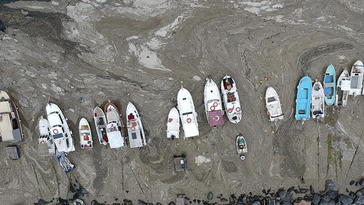 Turkey promises action on 'sea snot' engulfing the coast