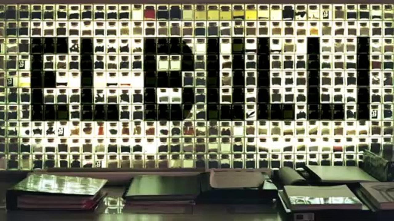 El Bulli Cooking In Progress Documentary Movie