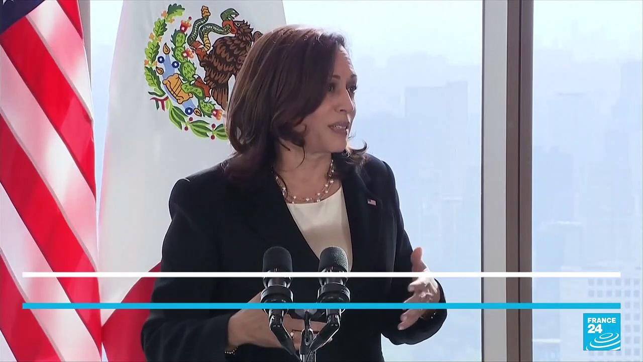 US Vice President Harris pledges to visit US southern border