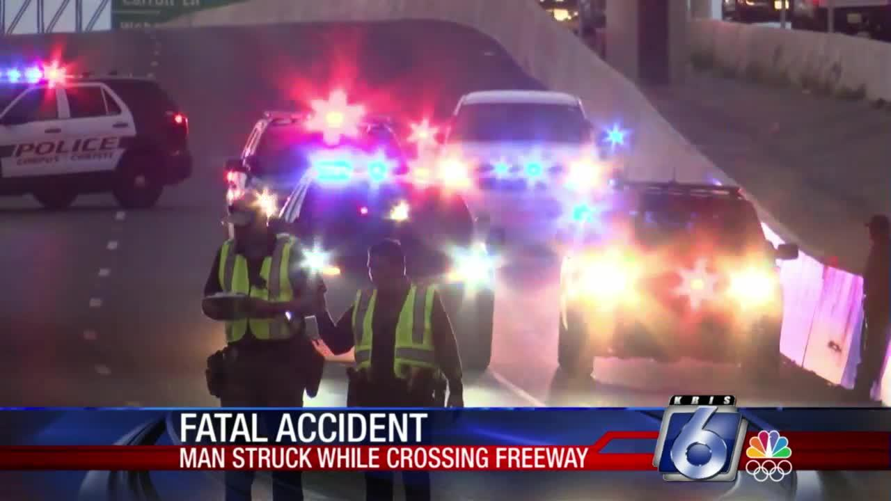 Pedestrian killed trying to cross freeway