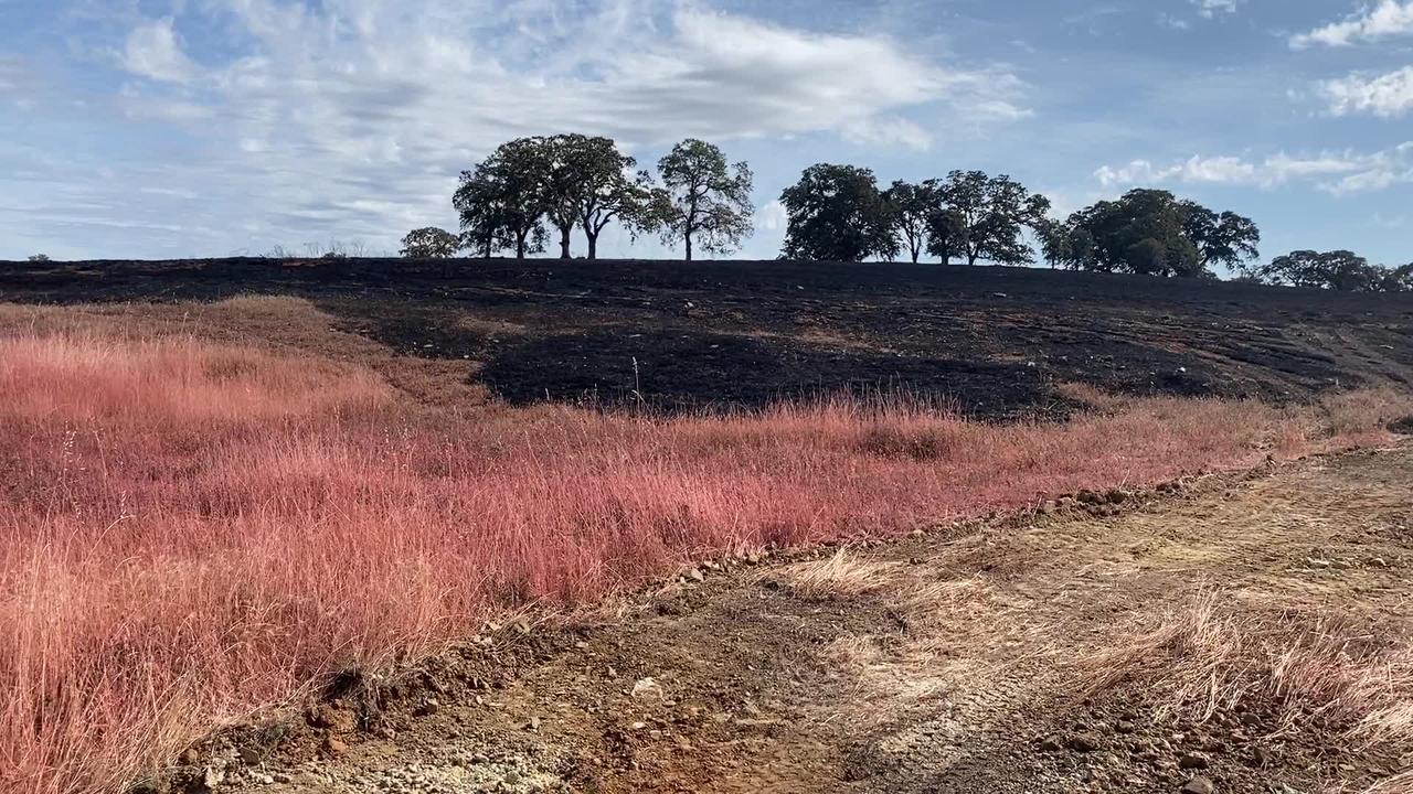 Intanko Fire burn scar along Beale Air Force Base