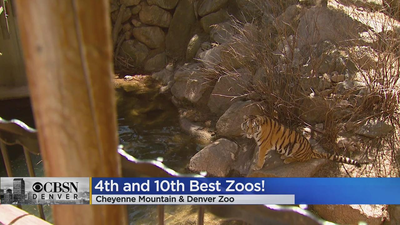 Cheyenne Mountain & Denver Zoo Among US Todays Top 10 Zoos!