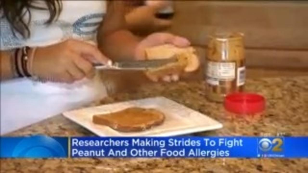 University Of Chicago Students, Scholars Work On Cure For Peanut Allergy