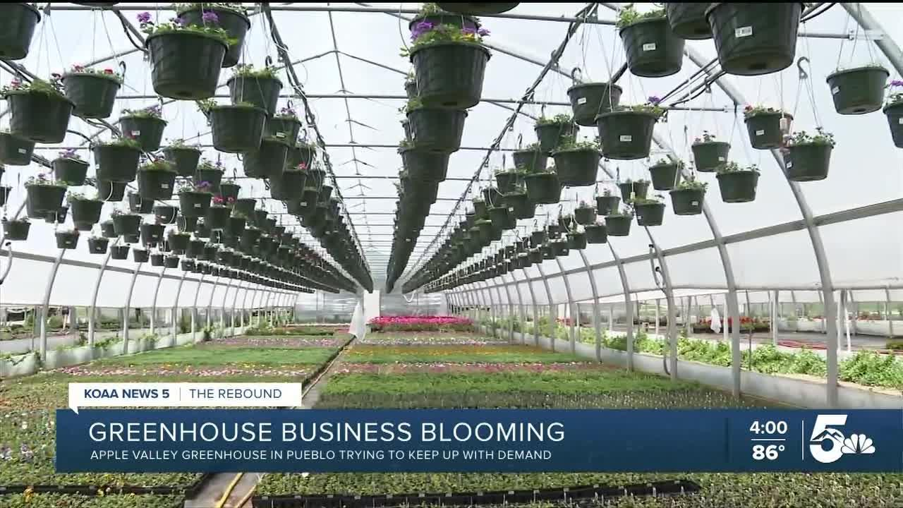 The Rebound Colorado: Apple Valley Greenhouse keeping up with demand