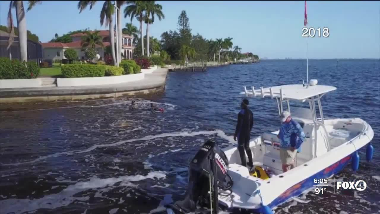 Cape Coral approves use of bubble curtains to fight blue-green algae blooms