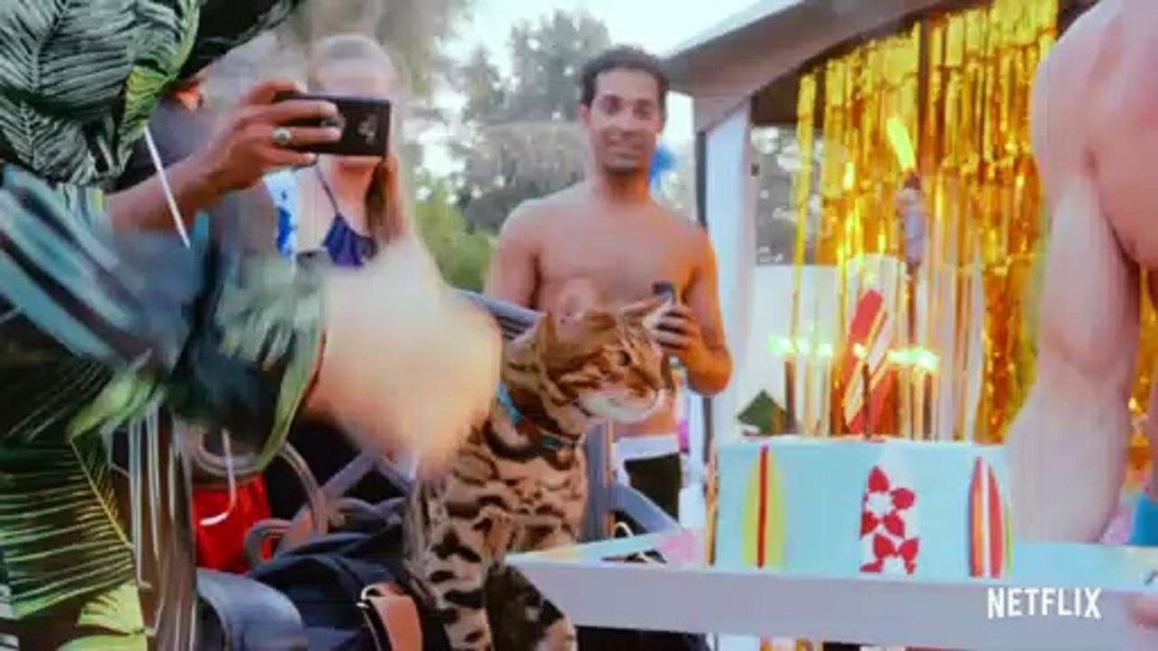 Cat People Season 1