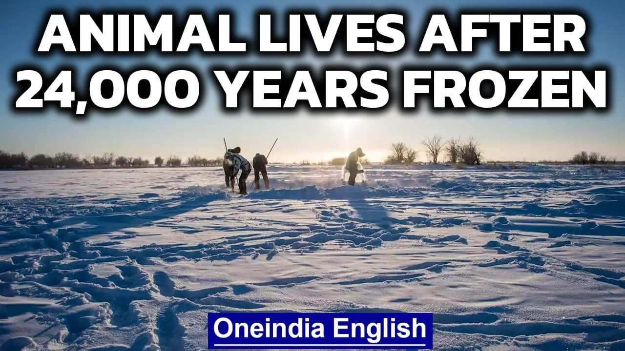 Animal alive after 24,000 years in deep freeze, can humans do the same? | Oneindia News