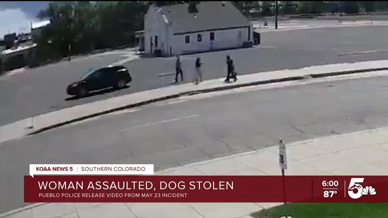 Pueblo Police seeking more information on aggravated robbery involving a dog