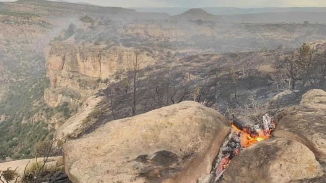 Beaver Tail Fire Burns 460+ Acres