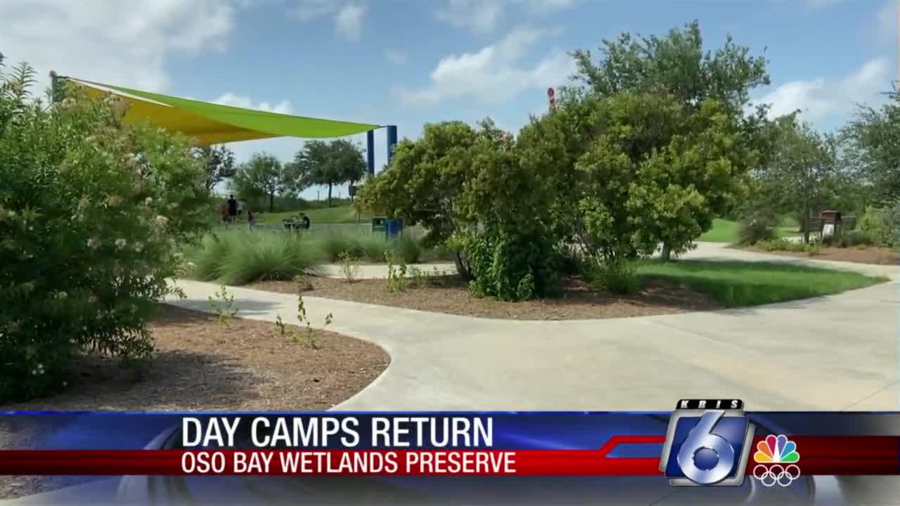 Day camps return