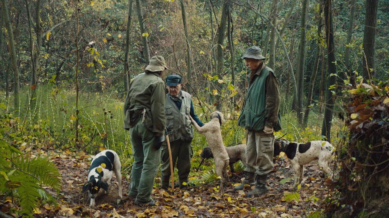 'The Truffle Hunters' Trailer