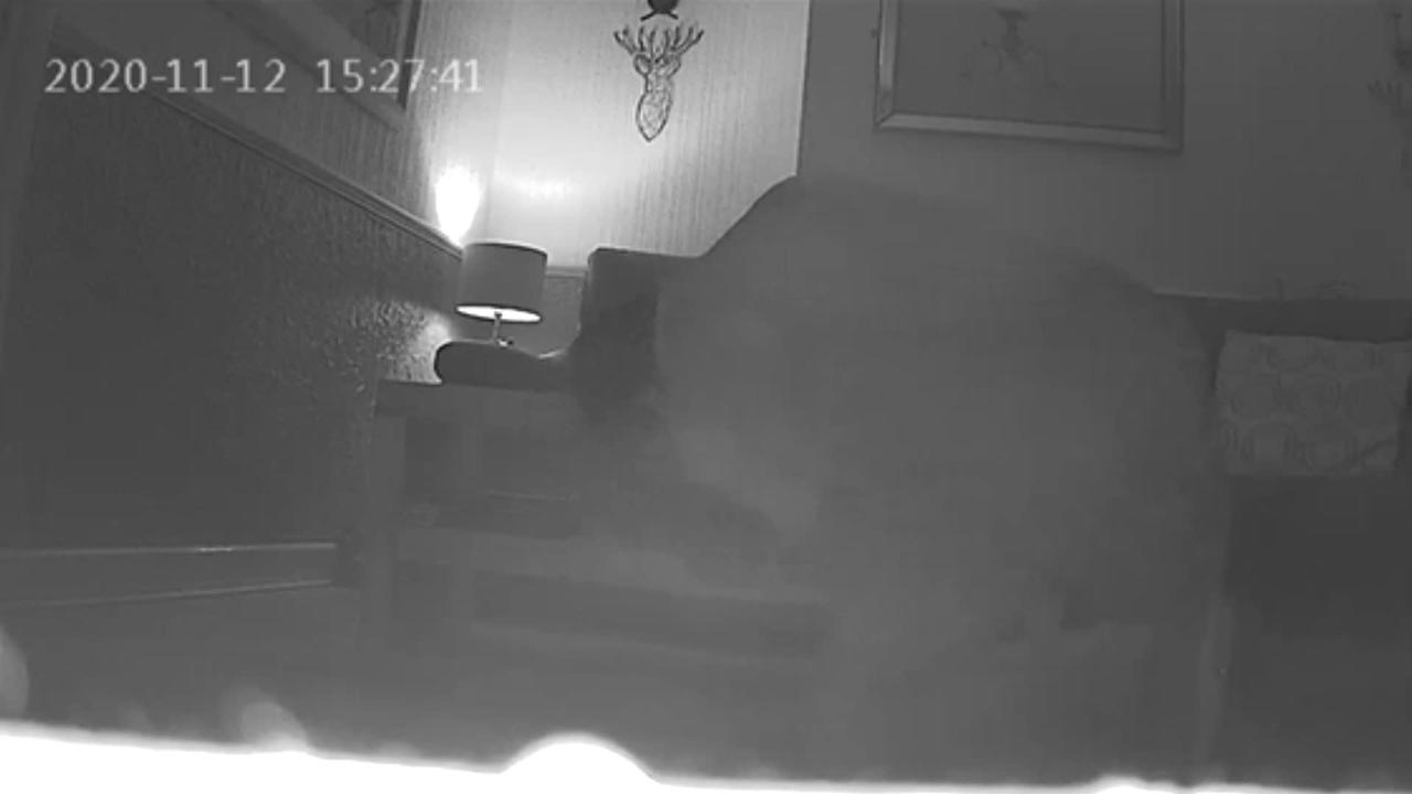 Watch chilling moment stalker removes listening device he planted in neighbour's home