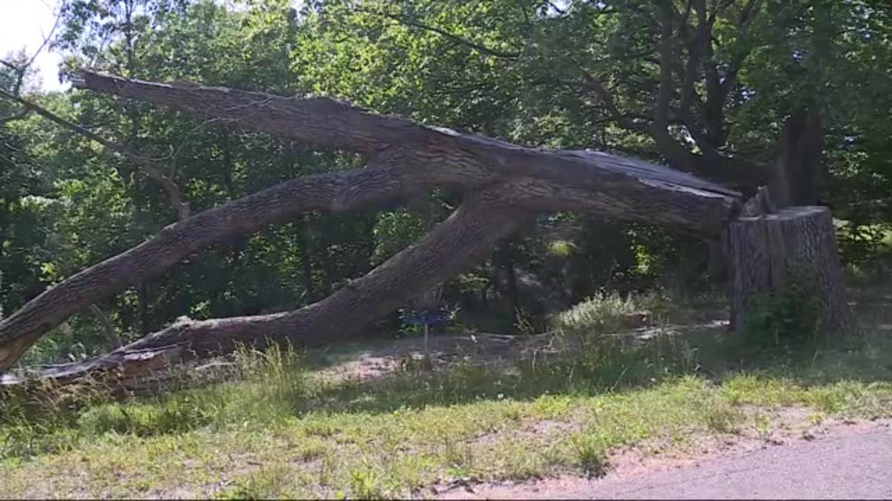 10 months later, cleanup continues from freak derecho that walloped Iowa