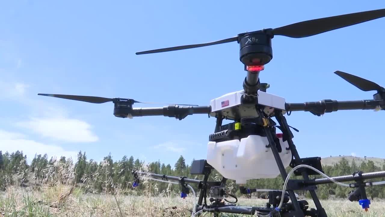 Using drones to battle Montana's weeds