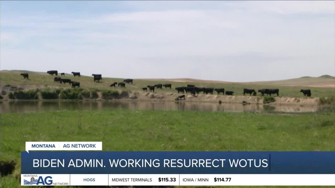 Montana Ag Report 6-10-21