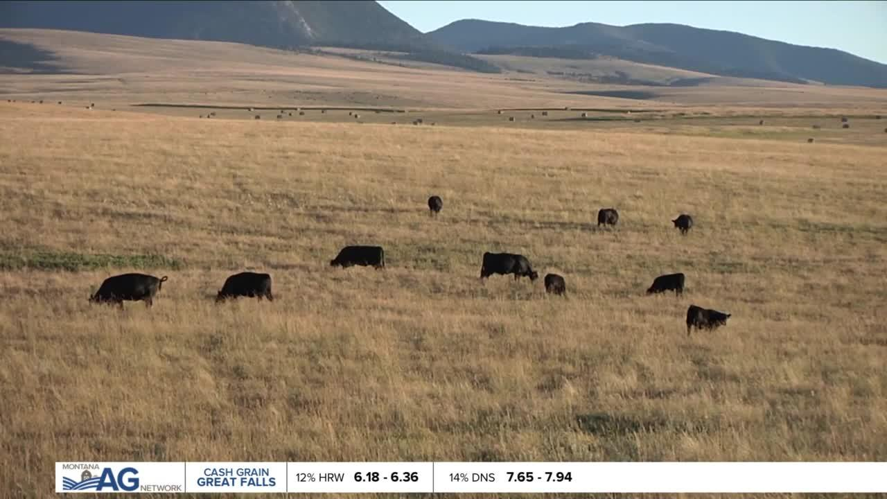 Montana Ag Report II 6-10-21