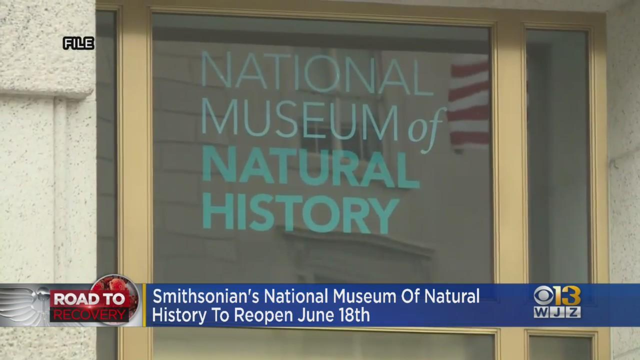 Smithsonian's National Museum Of Natural History To Reopen