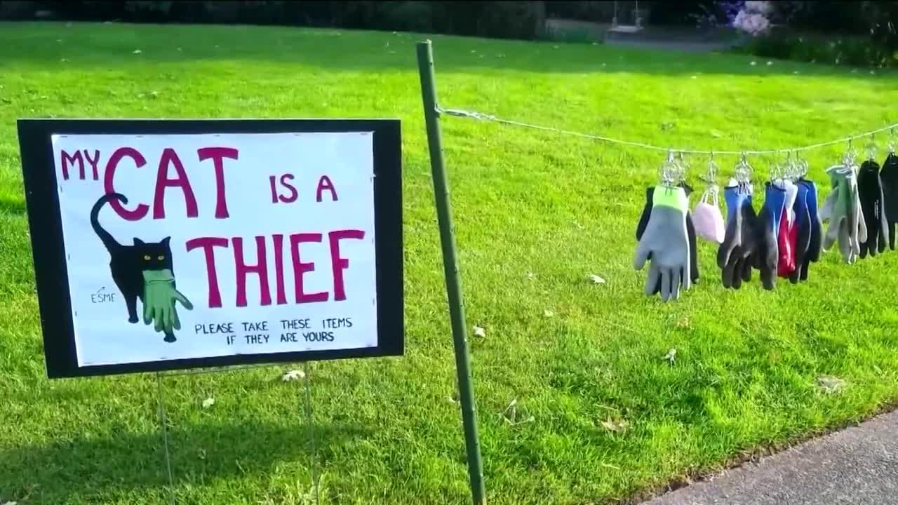 Woman puts up sign to warn neighbors her 'cat is a thief'