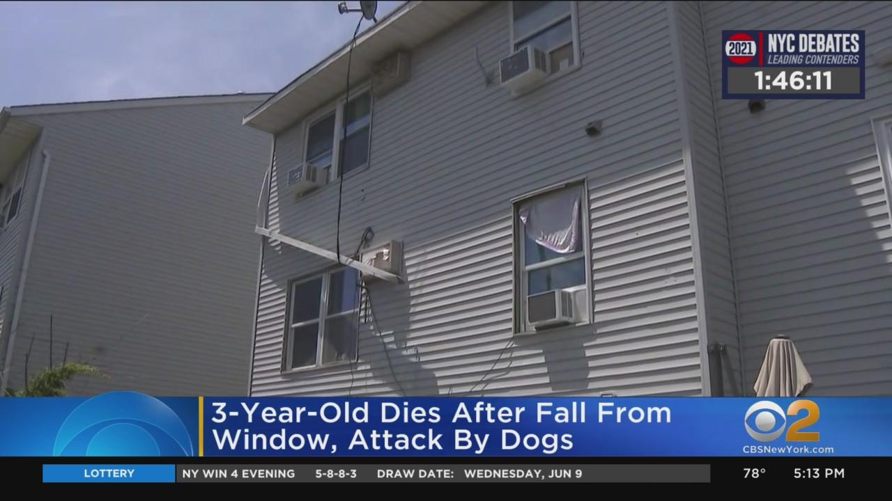 3-Year-Old Dies After Fall From Window, Dog Attack