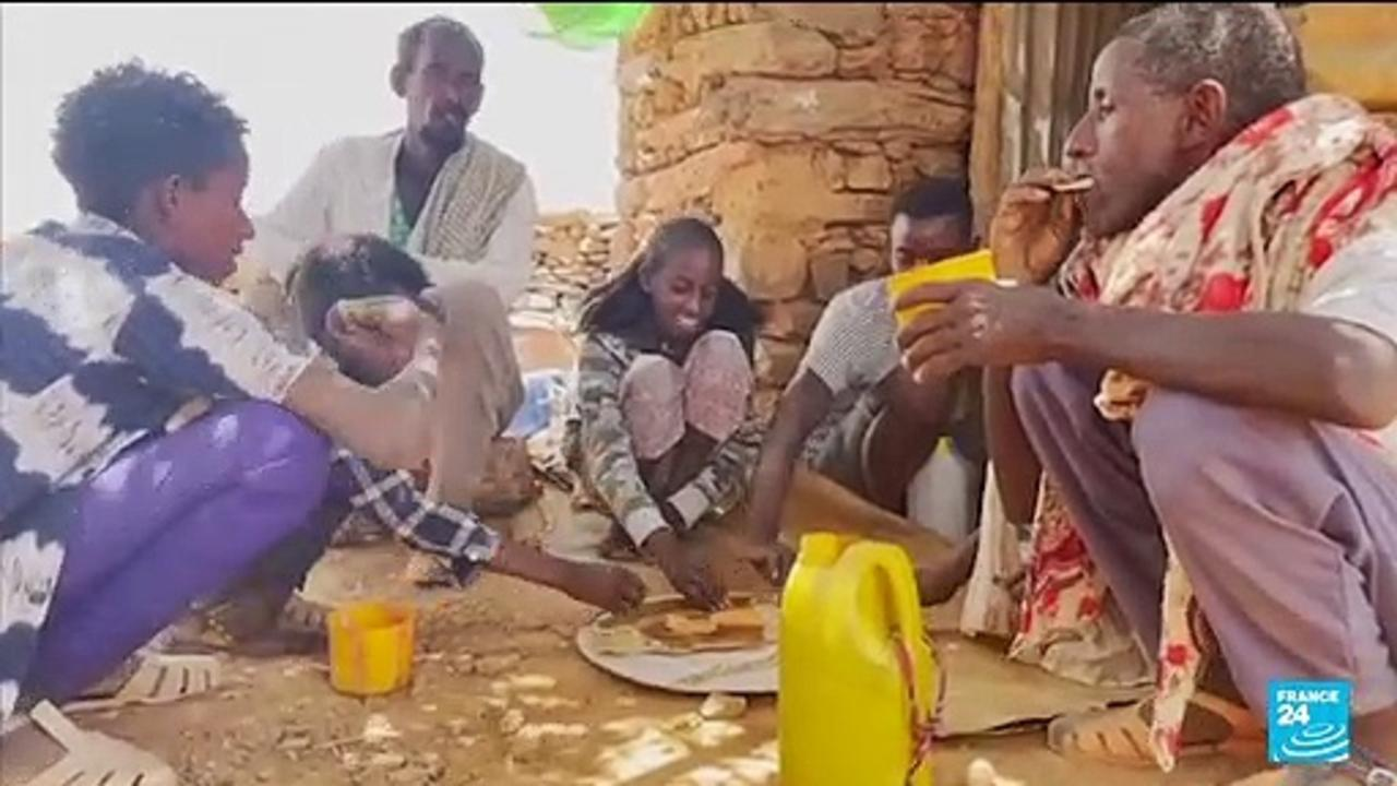 Some 350,000 people in Ethiopia's Tigray in famine -U.N. document