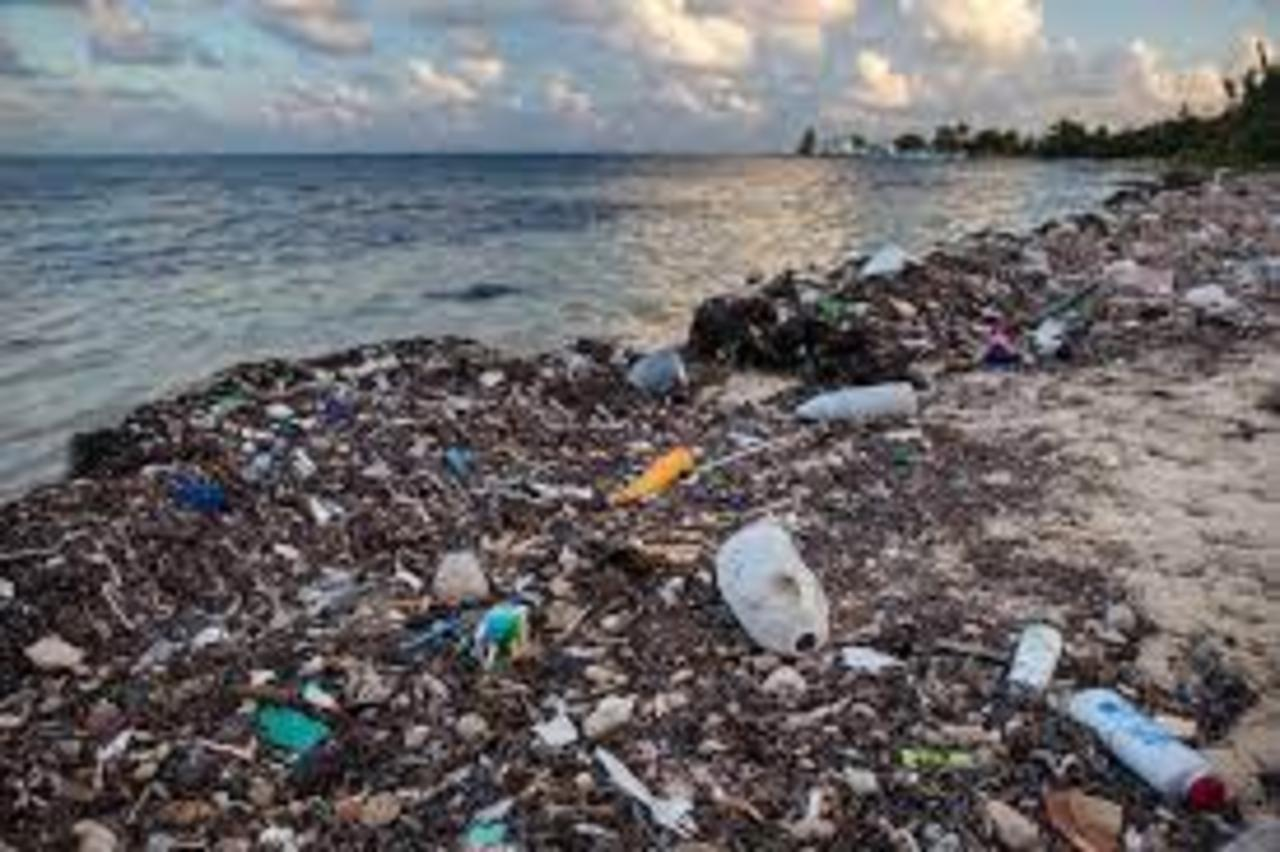 Fast-Food Waste Is Rapidly Filling the Ocean With Plastic