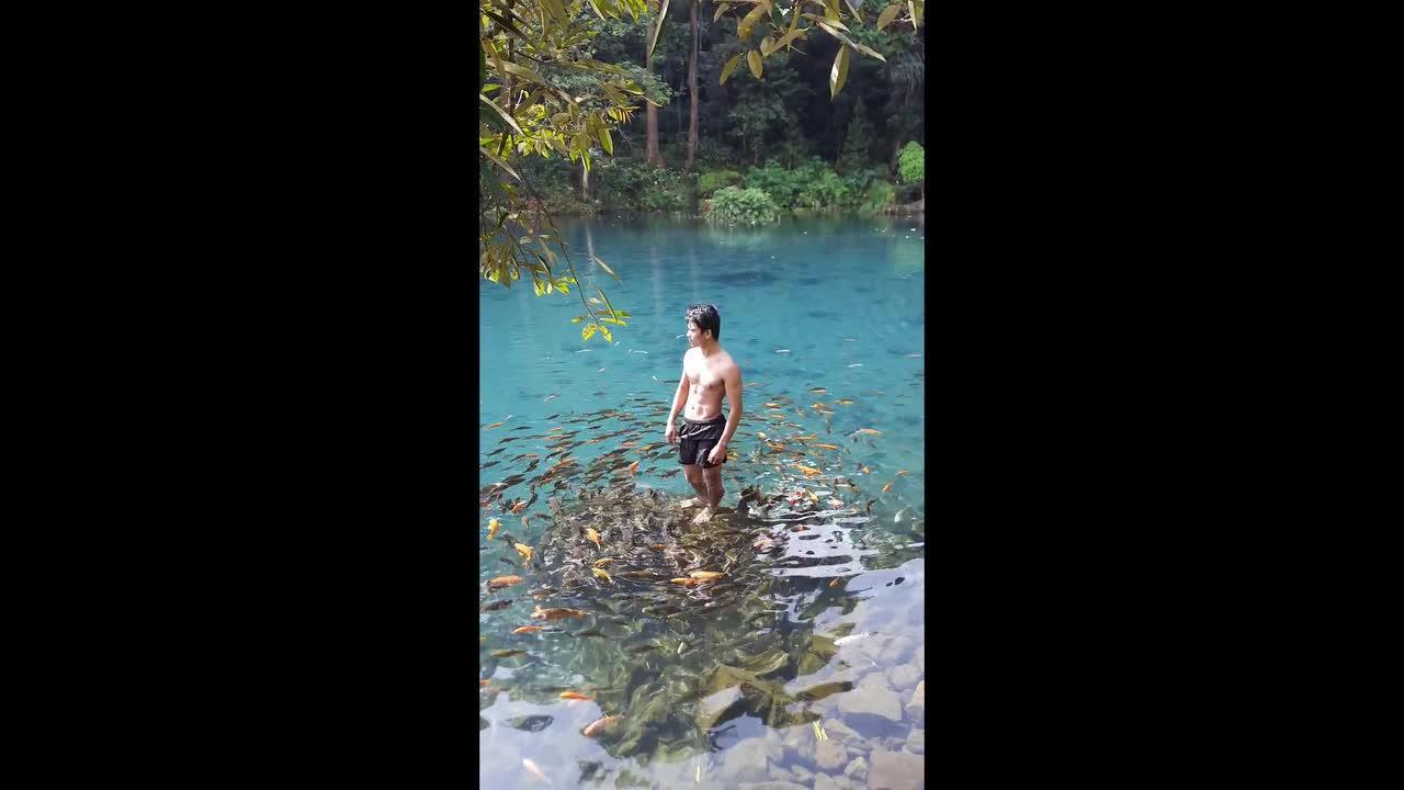Indonesian man dubbed 'Aquaman' after hundreds of fish circle him in lake
