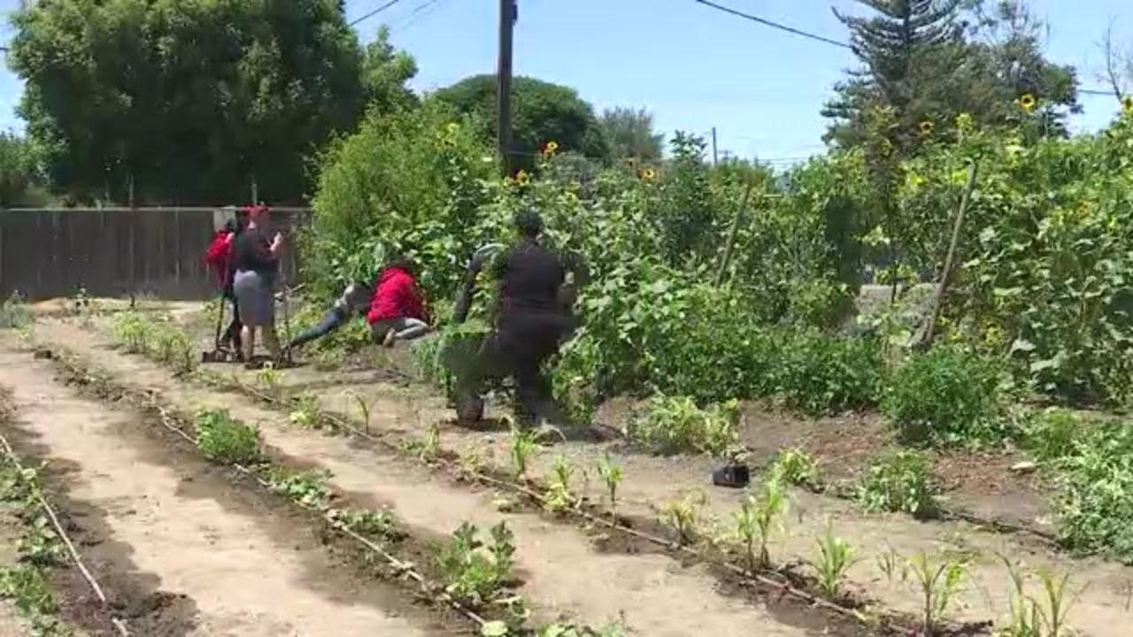 Turlock church 1 of 5 finalists for national agricultural grant