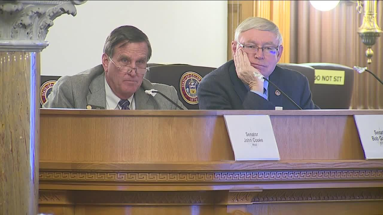 Committee formed to investigate ethics complaint filed against state senator over judiciary comment