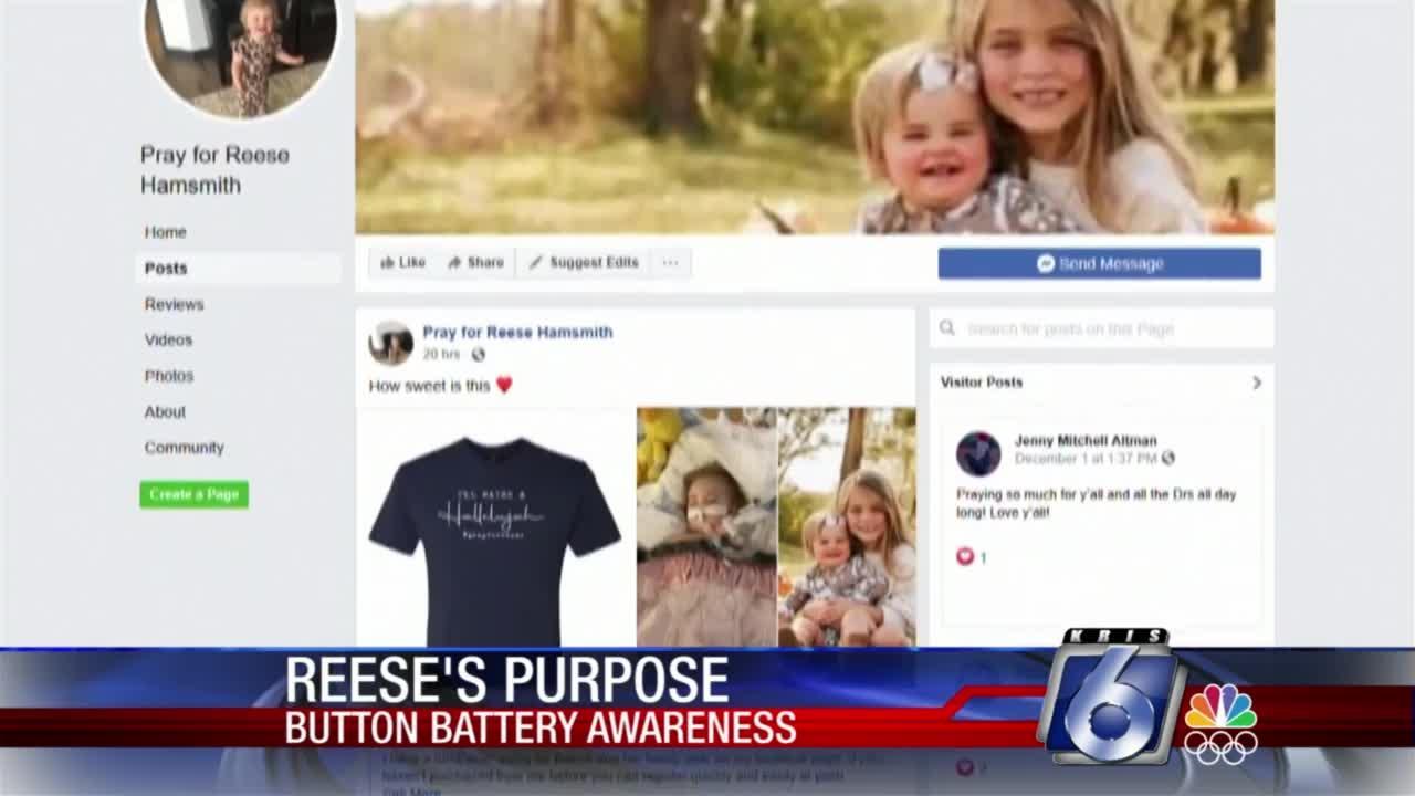 Reese's purpose