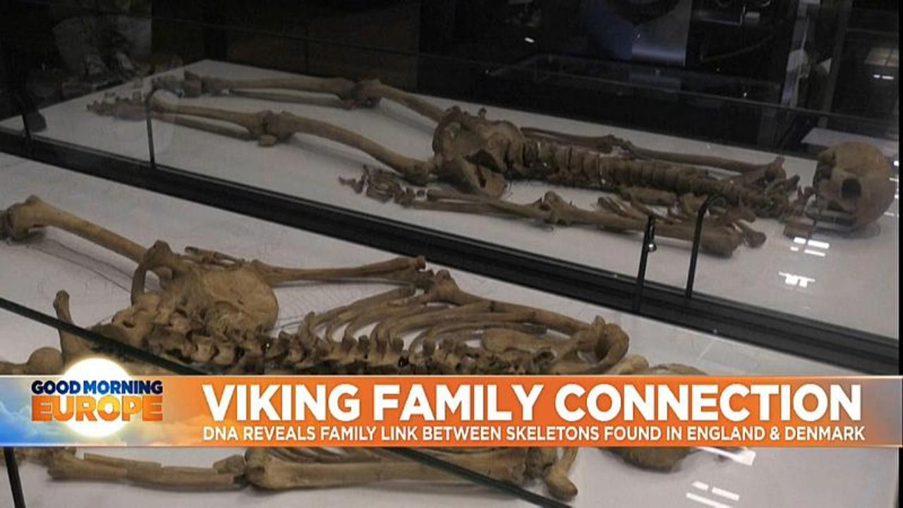 Skeletons of two related Viking men reunited in Denmark for first time in 1000 years