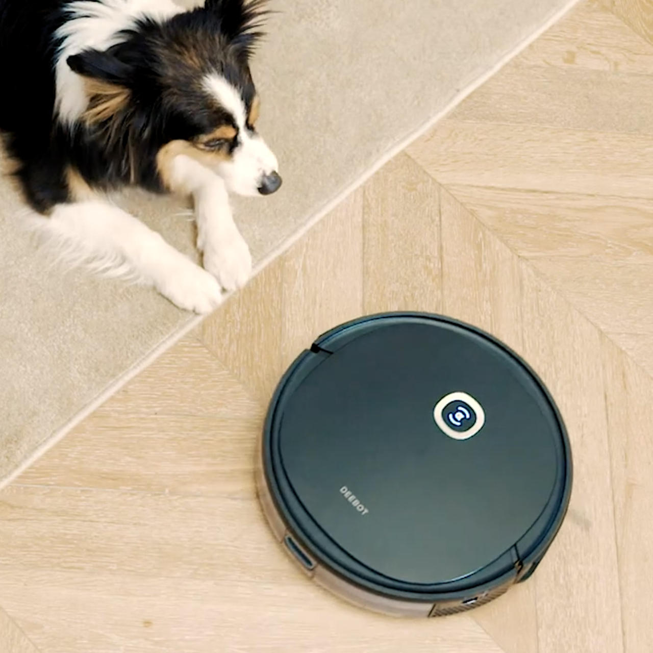 The EcoVacs Deebot is the ultimate robot vacuum cleaner that Amazon shoppers love