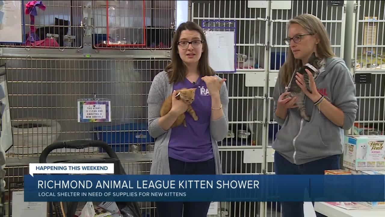 Richmond Animal League kitten shower