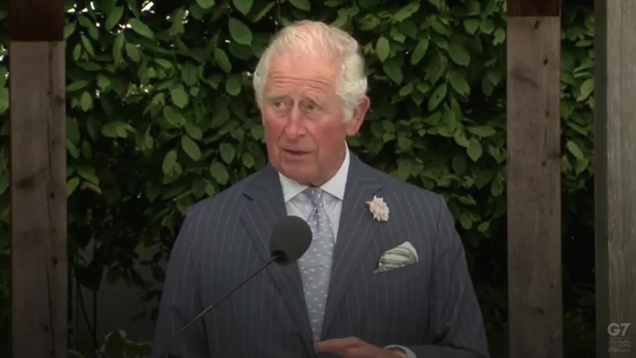 Climate change requires same urgency as pandemic, says Charles