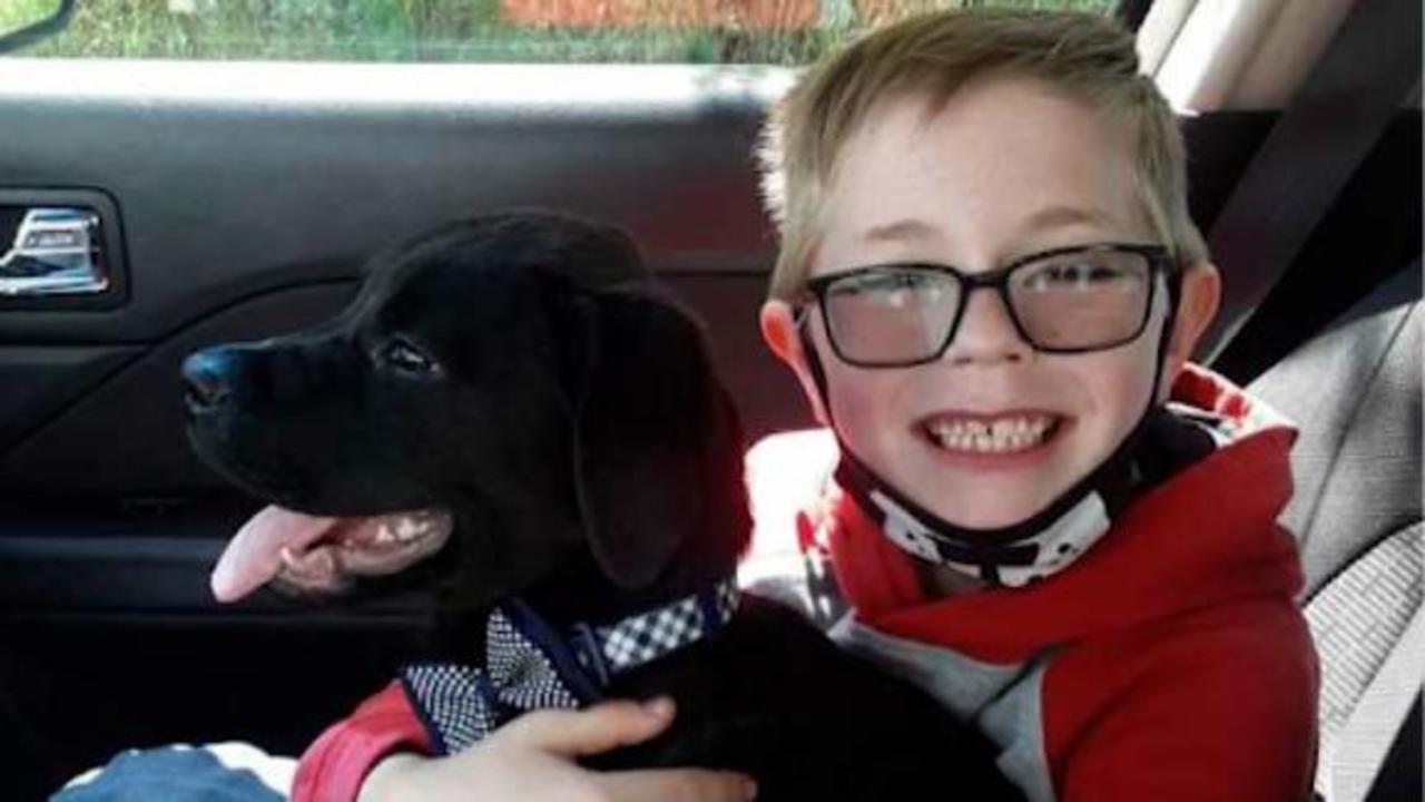 8-year-old boy sells Pokémon cards to help sick dog