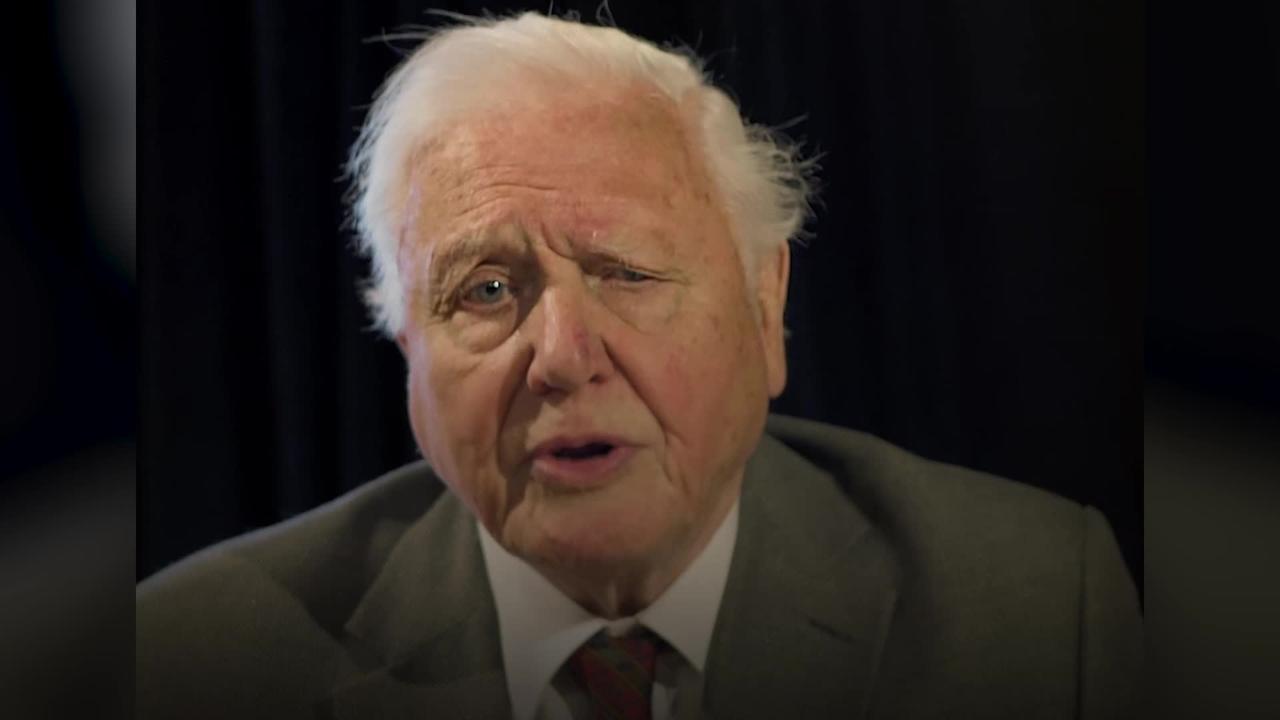 Sir David Attenborough addresses world leaders as G7 summit draws to close