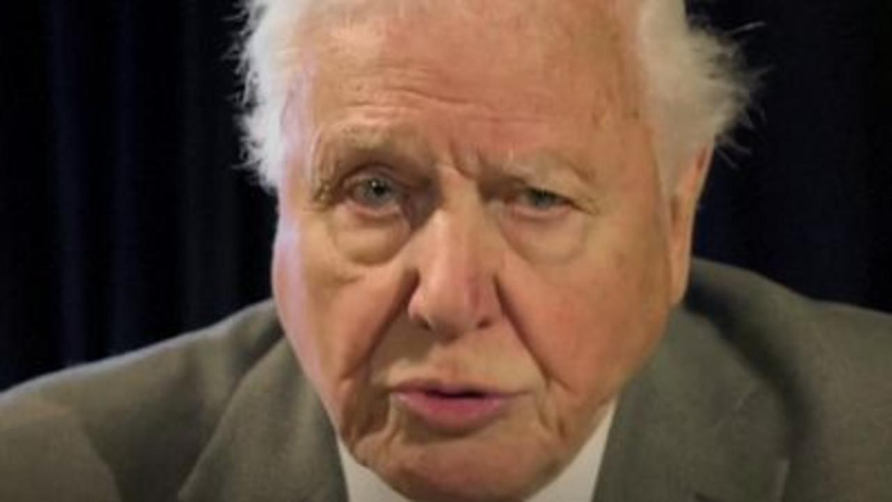 David Attenborough speaks to G7 leaders