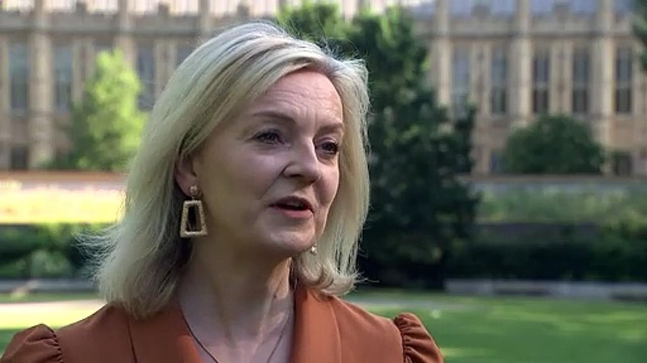 Liz Truss says UK won't 'lower standards' on trade
